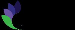 Delphinium Marketing Logo Charleston WV