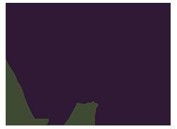 Medical Spa Logo Design Chicago IL